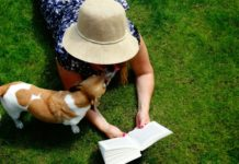jack russel puppy dog licking face of lady reading book on grass-min