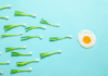 spring onions and an egg depicting female fertility