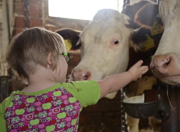 down-syndrome-child-with-cows