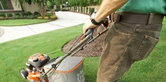 lawnmower-parent