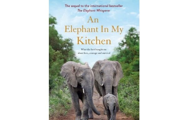 an-elephant-in-my-kitchen-book