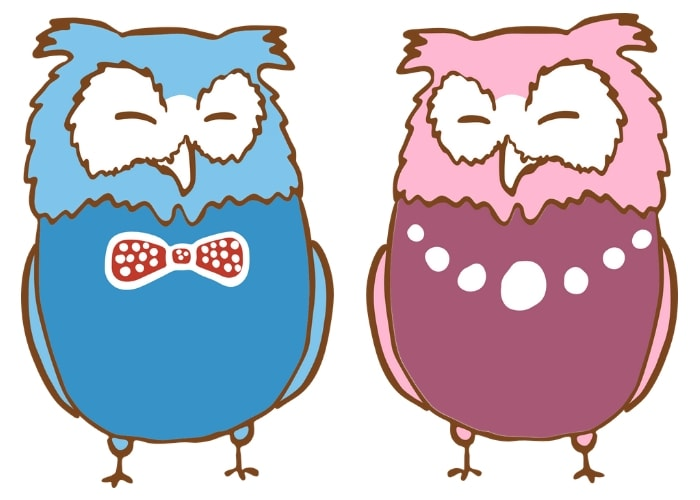 boy-and-girl-owls-gender-stereotype
