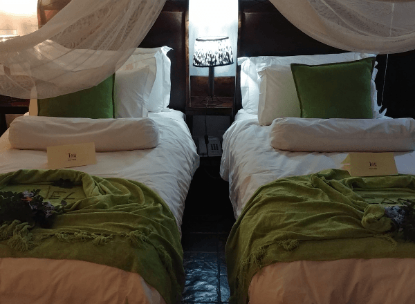 deluxe-room-at-tau-game-lodge-for-family-getaway