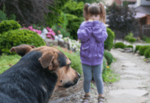 Young girl looking at dog with scared expression