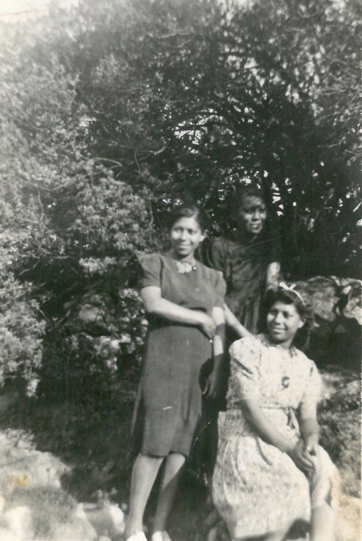 Old photograph of twins from family of twins