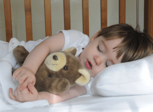 Toddler sleeping in cot holding stuffed bear