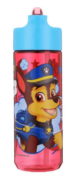 gifts for kids under R100 paw patrol bottle
