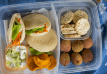 lunchbox idea for kids kids mini pitas with tuna and vegetables