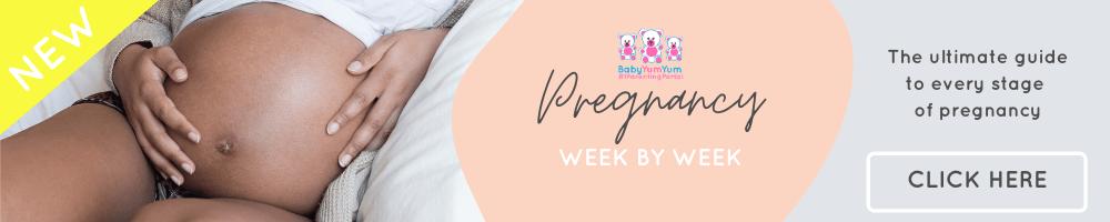 Pregnancy week by week (2)